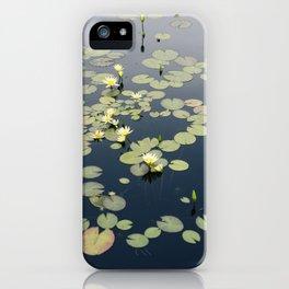 Garfield Park Conservatory iPhone Case
