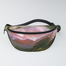 Raindrops on the Pink Rose Petals in the Sun Fanny Pack