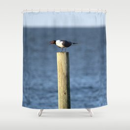 Ocracoke Seagull 3 Shower Curtain