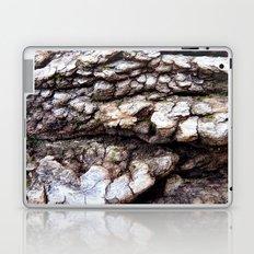 Wood Texture #1 Laptop & iPad Skin