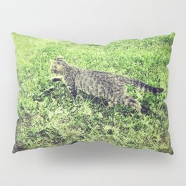 Cat on the Prowl Pillow Sham