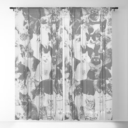 Cats Forever B&W Sheer Curtain