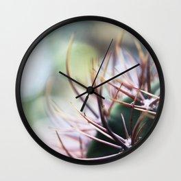 Cactus in the sunlight Wall Clock