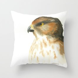 juvenile red-tailed hawk Throw Pillow