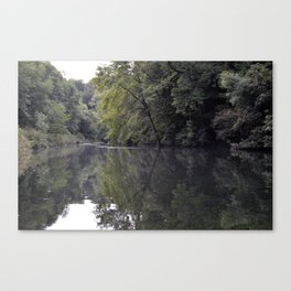 Pond in the Forest Canvas Print