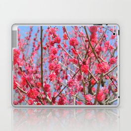 Japanese Spring #1 Laptop & iPad Skin