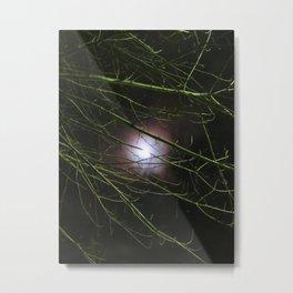 Autumn Moon Peeks Through The Branches Metal Print