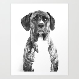 dog mugshot Art Print