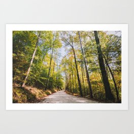 Forest Road - Muir Valley, Kentucky Art Print