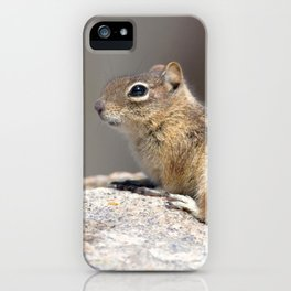 Watercolor Golden-Mantled Ground Squirrel 01, Dunraven Trail, Colorado, On Top of the World iPhone Case