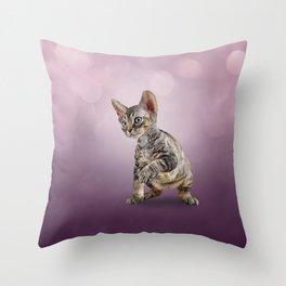 Drawing cat Cornish Rex 6 Throw Pillow
