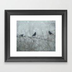 Wintry Crows Framed Art Print