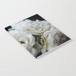 Eclipsed Pangaea Studios Notebook