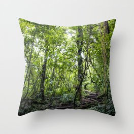 Hiking through the Rainforest on the side of the Mombacho Volcano in Nicaragua Throw Pillow