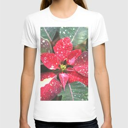 Raindrops on a poinsettia Christmas flower T-shirt