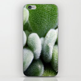 Succulent iPhone Skin