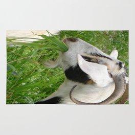 Billy Goat Horns Rug