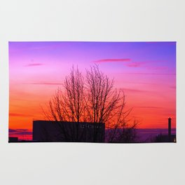Concept landscape : city sunset Rug