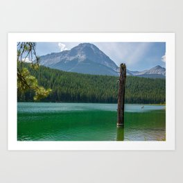 Stick in the Lake Art Print