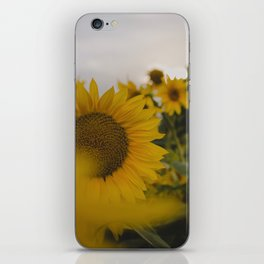 Happy Field iPhone Skin