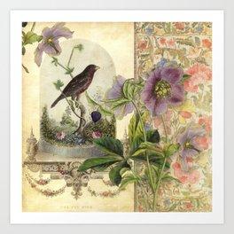 The Pet Bird Art Print