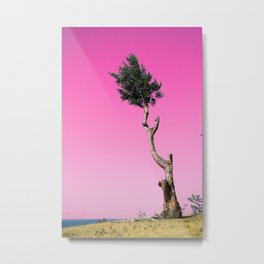 Landscape Pink sky with tree Metal Print