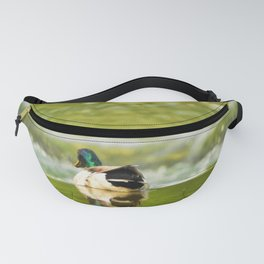 Mallard Pondering the Plunge Fanny Pack