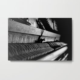 DUSTED Metal Print