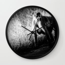 Mother and baby baboon Wall Clock