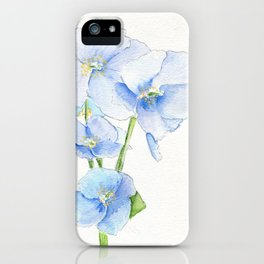 Blues In Nepal iPhone Case