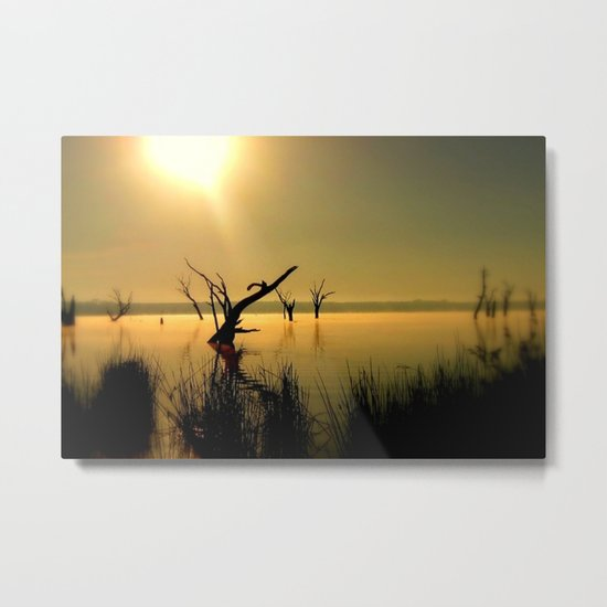 Sun Worshipper  Metal Print