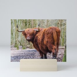 Highland Cow in Nature | Scottish Highlander | The Netherlands (Europe) | Colorful Travel Photography Mini Art Print