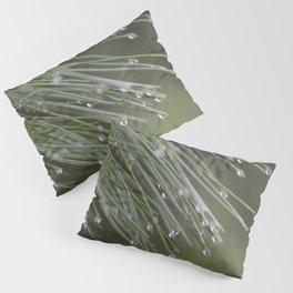 Raindrops on Pine Tree Macro Nature Photography - Anticipation Pillow Sham