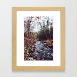 Autumn Woods III Framed Art Print