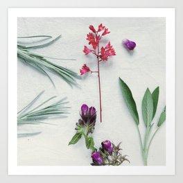 Coral Flower-3 Art Print