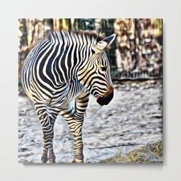 Painted Zebra 11218 Metal Print