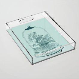 BIRDS Acrylic Tray