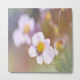 Anemone in the Garden Metal Print