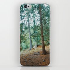 into the woods 01 iPhone & iPod Skin