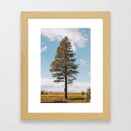 Marsh Tree Framed Art Print