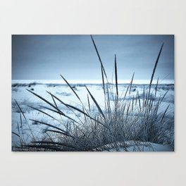 Blue Beachscape Canvas Print