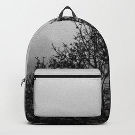 tree top Backpack