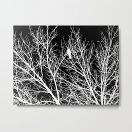 Modern Contemporary Black and White Tree Bird Art A539 Metal Print
