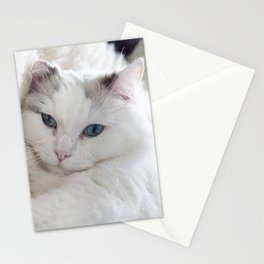 Bedroom eyes Stationery Cards