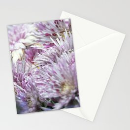 Longwood Gardens Autumn Series 156 Stationery Cards
