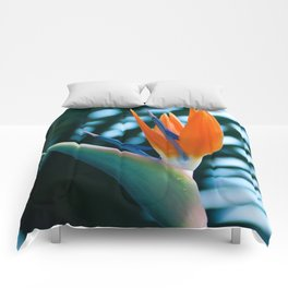CORAL Bird of Paradise Comforters