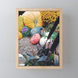 Freshly picked assortment of fall pumpkins, gourds, Autumn Decorations Framed Mini Art Print