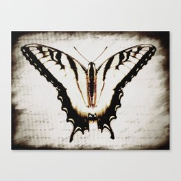 Butterfly Tiger Swallowtail A475 Canvas Print