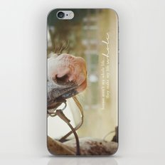 horses make me whole iPhone & iPod Skin
