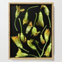 Squash Blossoms by farmtoscanner